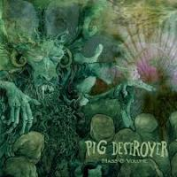 PIG DESTROYER - Mass and volume