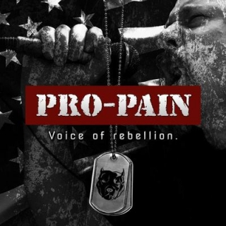 PRO-PAIN - Voice of rebellion DIGIPACK